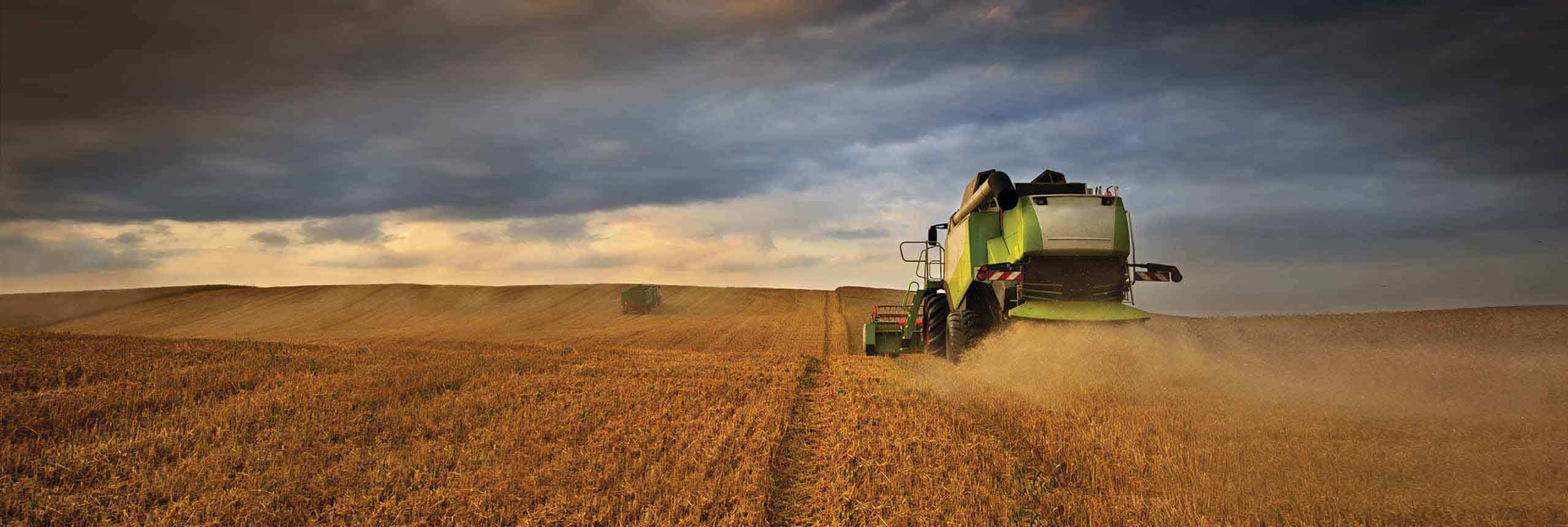 Profesjonalne rozwiązania dla rolnictwa - AgroDudek